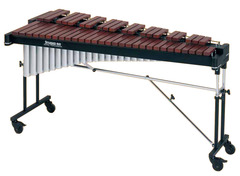 This instrument is called: