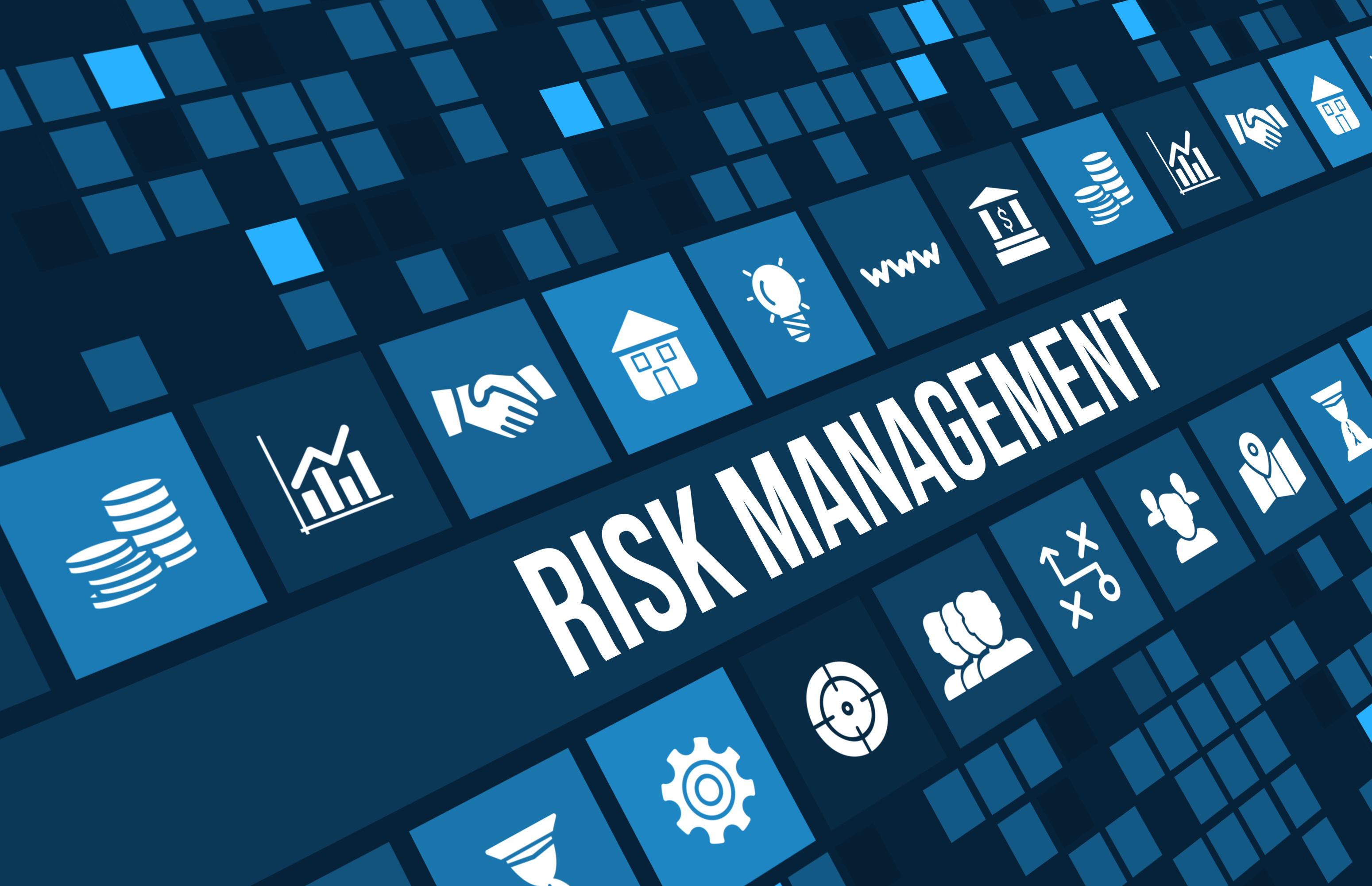Risk Management Essay: Some Useful Advice for Students