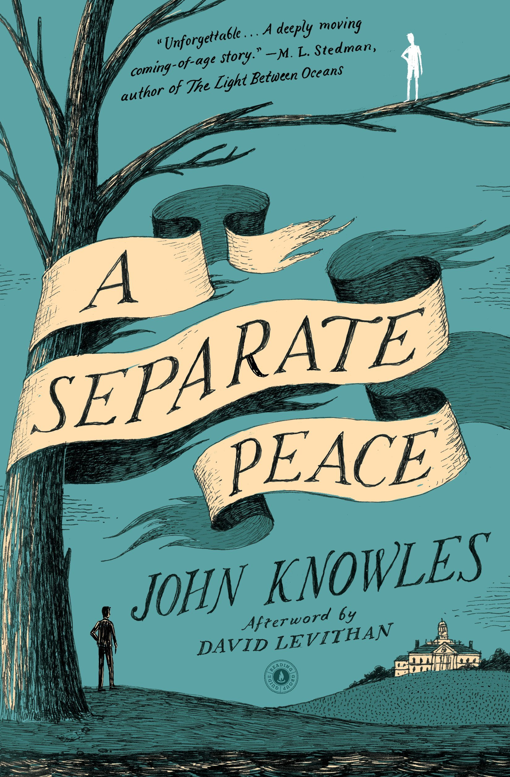 Separate Peace Essays: Literature of Politics? You Choose!