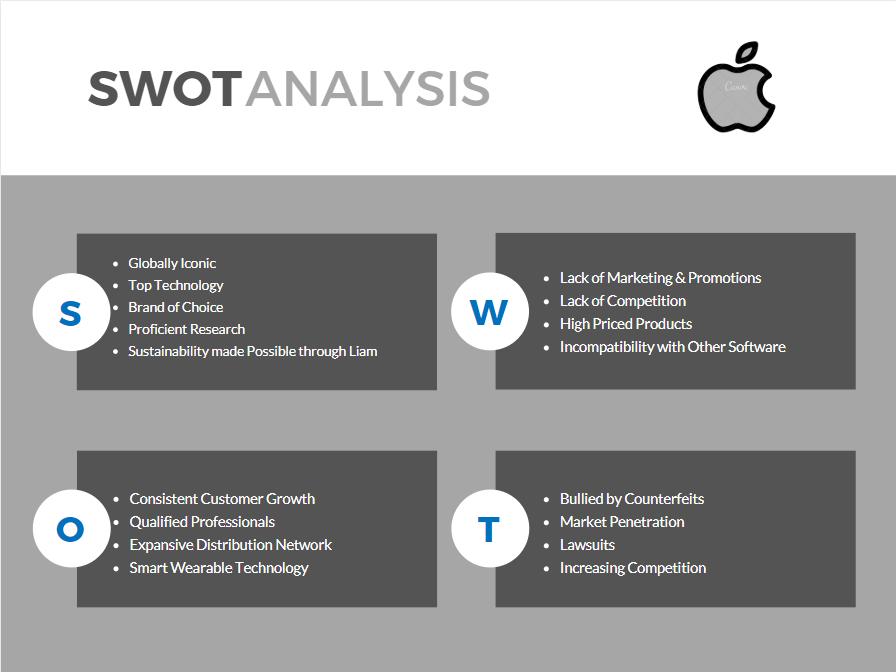 Swot analysis essay - Empower Software