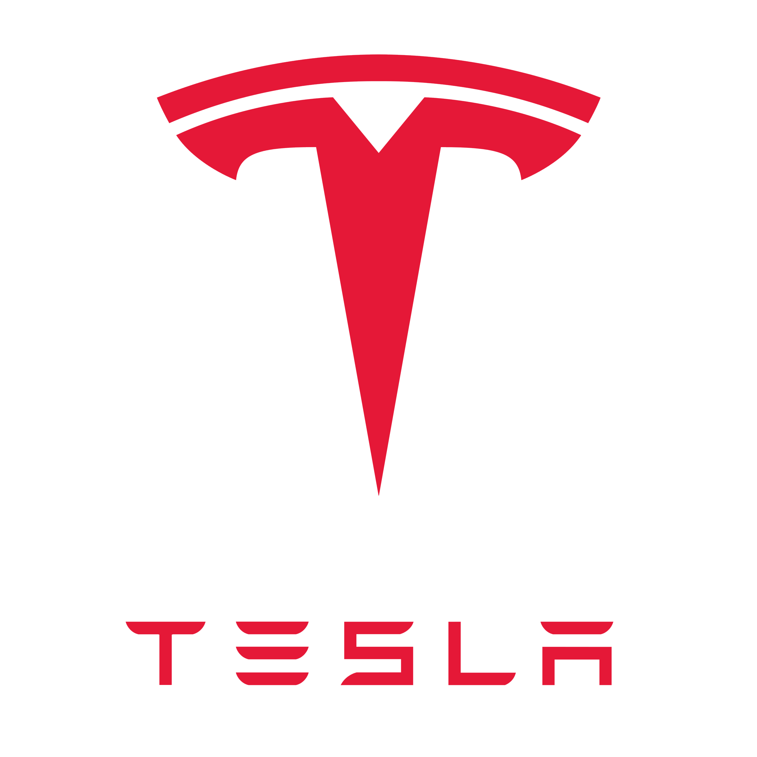 Tesla Analyse