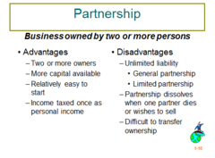 3 Disadvantages of Partnership