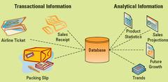 Transactional versus Analytical Information
