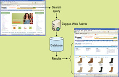 Zappos.com—A Data-Driven Website