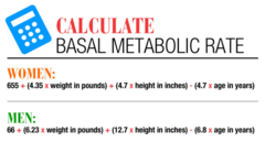 basal metabloic rate (BMR)