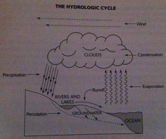Hydrologic cycle (pic)