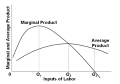 Refer to the diagram, where variable inputs of labor are being added to a constant amount of property resources. The total output of this firm will cease to expand: