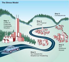 Stress model
