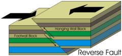 What type of fault is found at CONVERGENT plate boundaries?