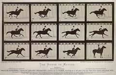 Title/ Designation: The Horse in Motion Artist/ Culture: Edward Muybridge Date of Creation: 1878 CE Materials: Albumen print