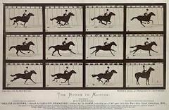 Title/ Designation: The Horse in Motion Artist/ Culture: Edward Muybridge Date of Creation: 1878 CE Materials: Albumen print