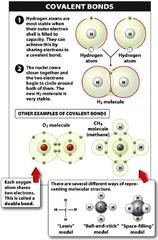 Define covalent bond