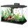 Aquarium Essay