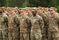Army Essay Example