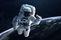 Essays on Astronaut