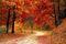 Essays on Autumn