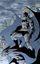 Essays on Batman