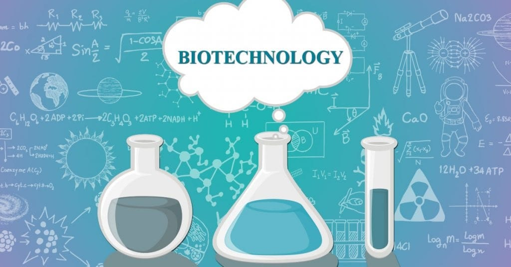 Essay about Biotechnology
