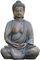 Essays on Buddha