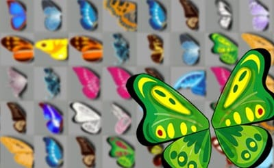 Essays on Butterfly