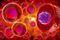 Essays on Cells