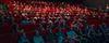 Essays on Cinema