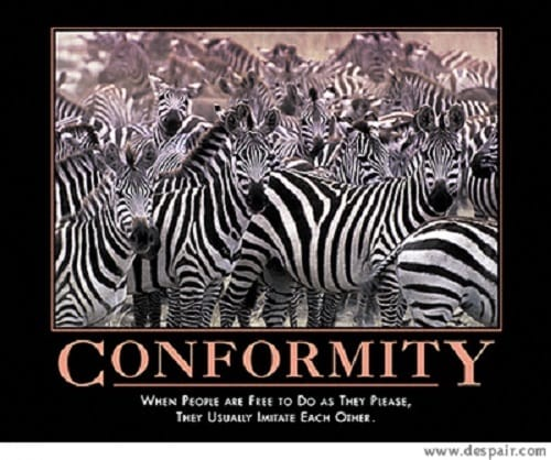 Essays on Conformity and Obedience