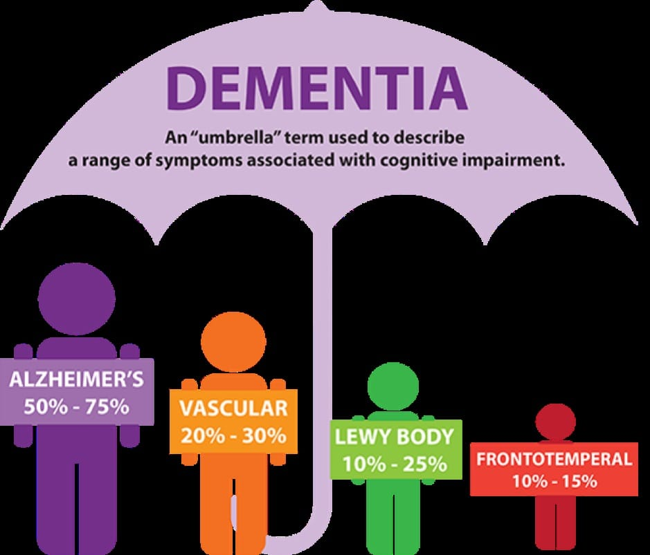 Essays on Dementia