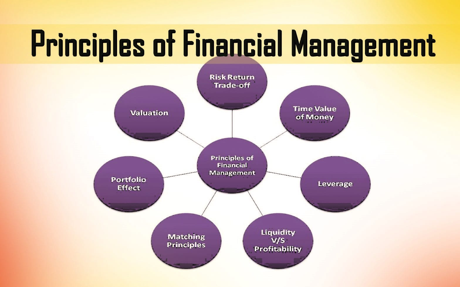 Essays about Financial Management
