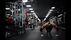 Essays on Fitness