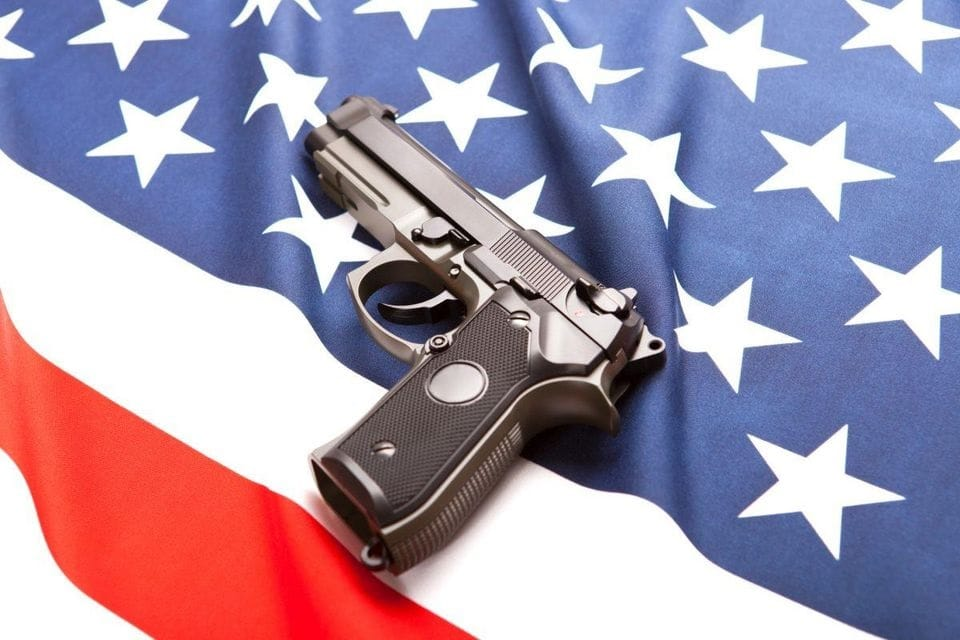 Gun Control Essay Examples and Research Papers