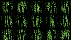 Essays on Matrix