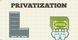 Essays on Privatization