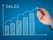 Essays on Sales