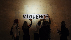 Essays on Violence